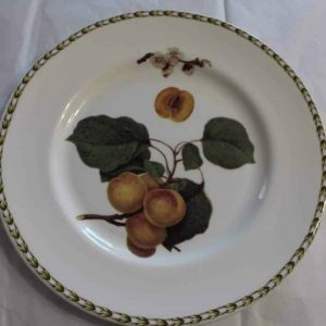 """Plate Dinner, """"Hooker's Fruit Apricot"""" by Rosina-Queens, Royal Horticultural Society"""