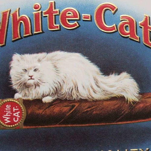 Label Cigar Box, White-Cat Cigars, Genuine, Original 1920's, NOS