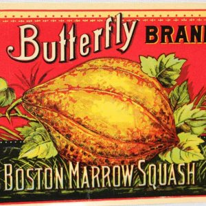Label Can, Olney & Floyd Squash, Butterfly Brand, Genuine NOS Antique