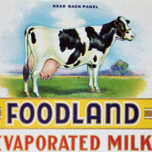 Label Can, Foodland Evaporated Milk, Genuine Original NOS