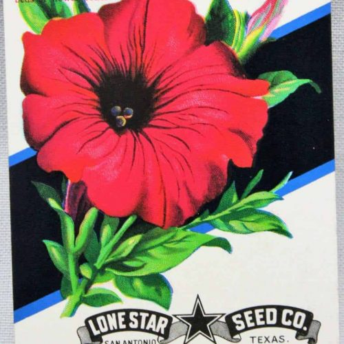 Seed Packets, Petunia #556 by Lone Star Seed Co. 1950's NOS