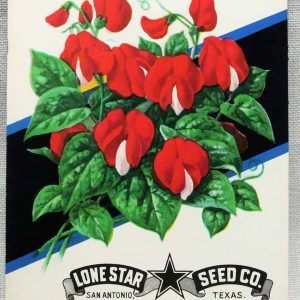 Seed Packets, Scarlet Runner #954 by Lone Star Seed Co. 1950's NOS