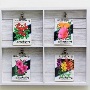 Seed Packets in Shiplap White Wood Frame- 4 Packets included