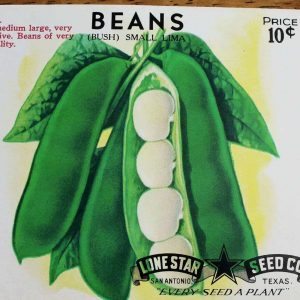 Seed Packets, Lima Bush Beans by Lone Star Seed Co. 1940's NOS