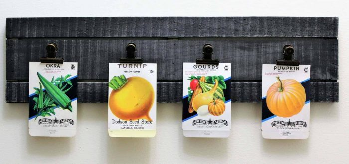 Seed Packets Framed in Rustic Wood Clip Frame- 4 Packets Included