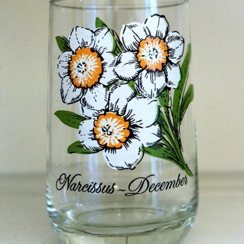 Glass, Flower of the Month, December / Narcissus, Brockway Tumbler