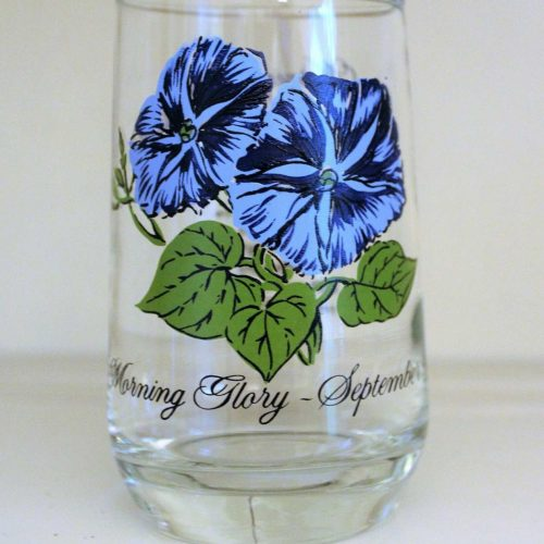 Glass, Flower of the Month, September / Morning Glory, Brockway Tumbler